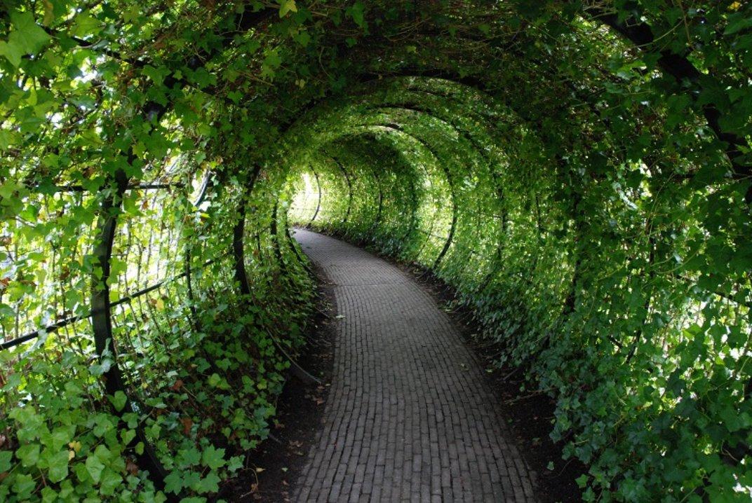 42 - poison garden